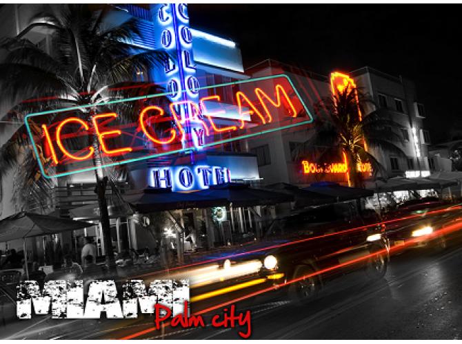 Palm City Miami the artwork factory