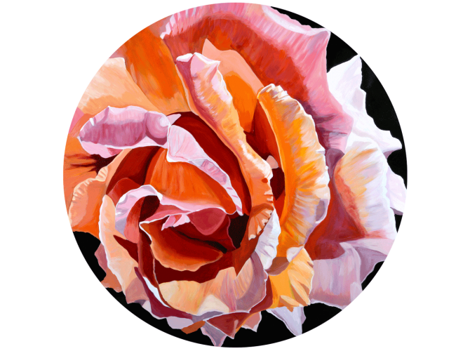 Blushing Peach Roses the artwork factory