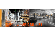 American Life in Lights