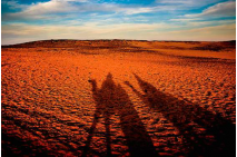 Shadows on the Sahara