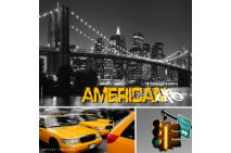 American Life 1