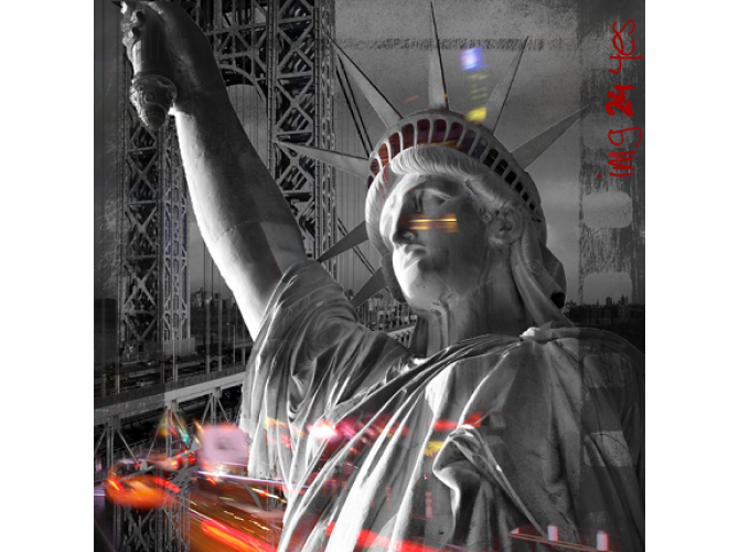Lady Liberty in Black and White the artwork factory