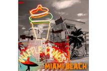 Miami Soft Ice